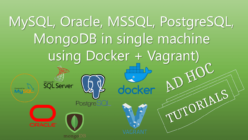 Multiple Databases via Docker Vagrant