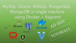 Multiple Databases via Docker Vagrant